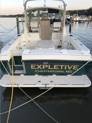 Albin 28TE w/transom door   from Elisabeth C, MD
