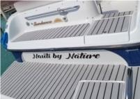 Crownline 242 CR Boat Lettering from David R, MI