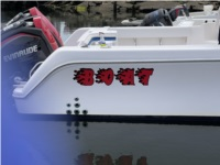 Pro Line Boat Lettering from Chris P, NY