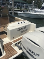 2017 Chris Craft  Boat Lettering from Dan C, VA